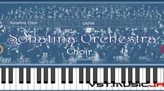 Fra le caratteristiche di Sonatina Choir:  Men.