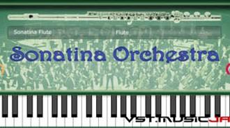 Fra le caratteristiche di Sonatina Flute:  Piccolo.
